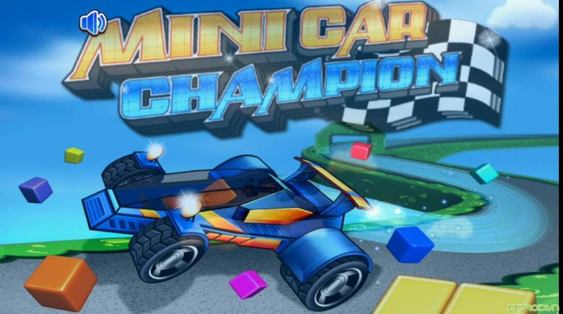 Minicar Champion Circuit Race (2)